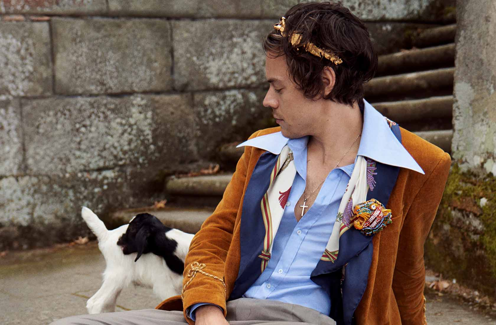 Gucci Harry Styles